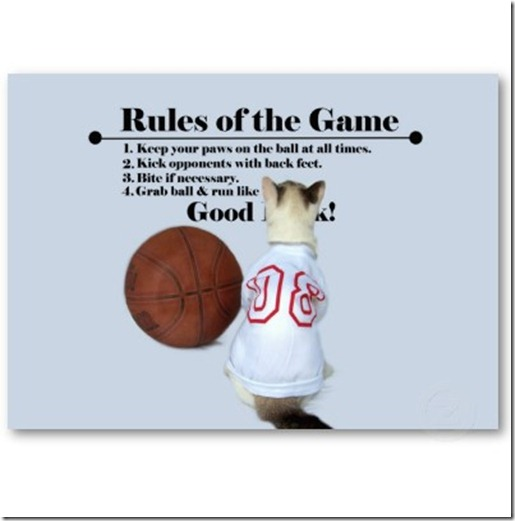 rules_of_the_game_cat_profile_business_cards-p240745229685036614zvf9i_400