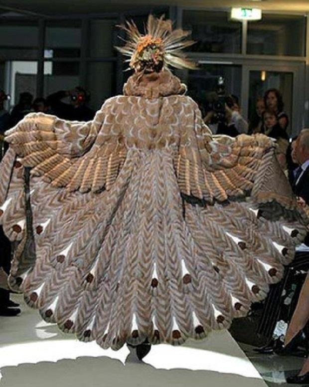 fashionpeacockdesigninspiration-a8b739fe93aeec55b43bdee20e00a29e_h