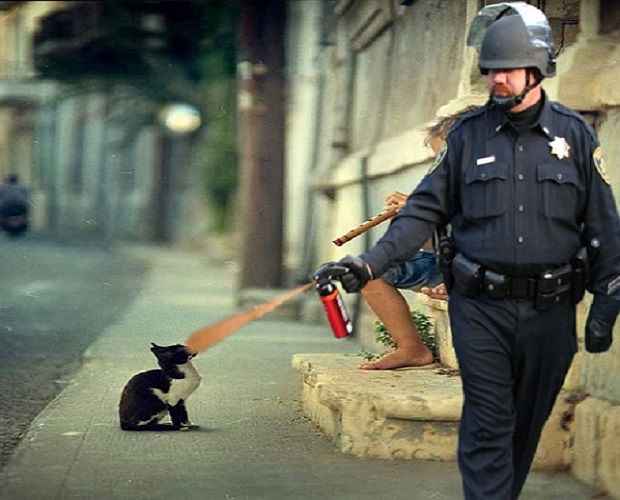 pepper-spray-cop-17 (2)